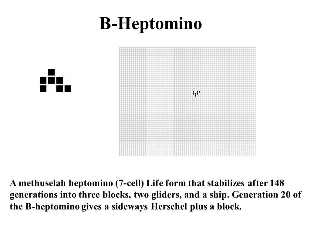 B-Heptomino