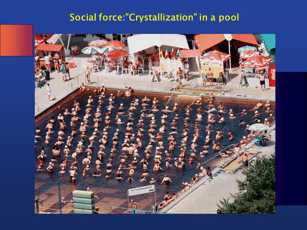 Social force: Crystallization in a pool