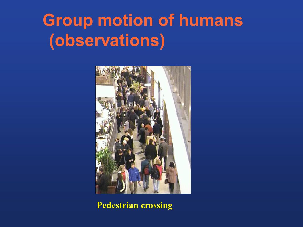 Group motion of humans (observations)