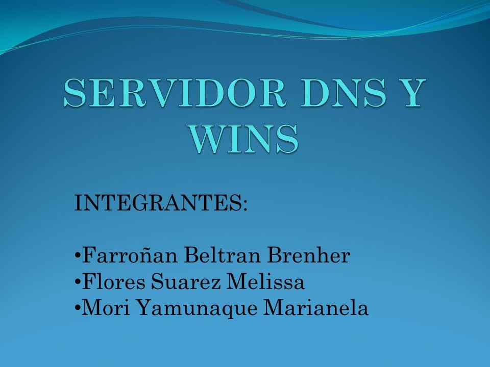 SERVIDOR DNS Y WINS INTEGRANTES: Farroñan Beltran Brenher