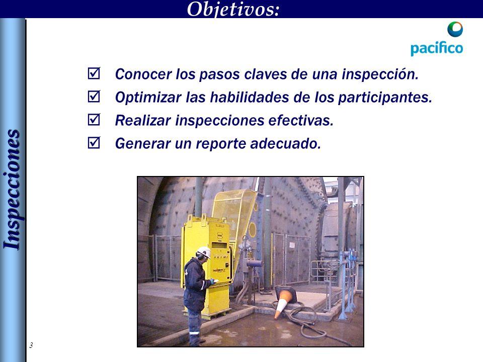 Inspecciones Objetivos: Conocer los pasos claves de una inspección.