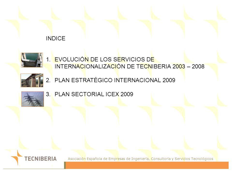 INDICEEVOLUCIÓN DE LOS SERVICIOS DE INTERNACIONALIZACIÓN DE TECNIBERIA 2003 – 2008. PLAN ESTRATÉGICO INTERNACIONAL 2009.