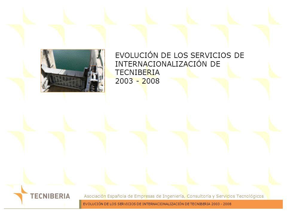 EVOLUCIÓN DE LOS SERVICIOS DE INTERNACIONALIZACIÓN DE TECNIBERIA