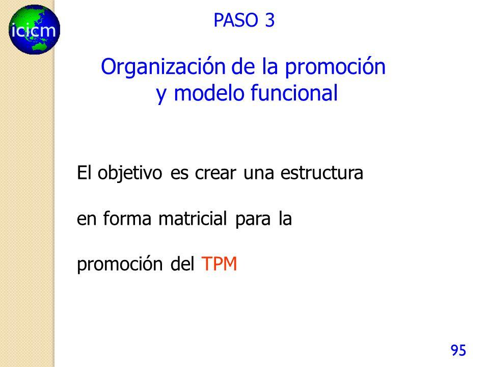 Organización de la promoción