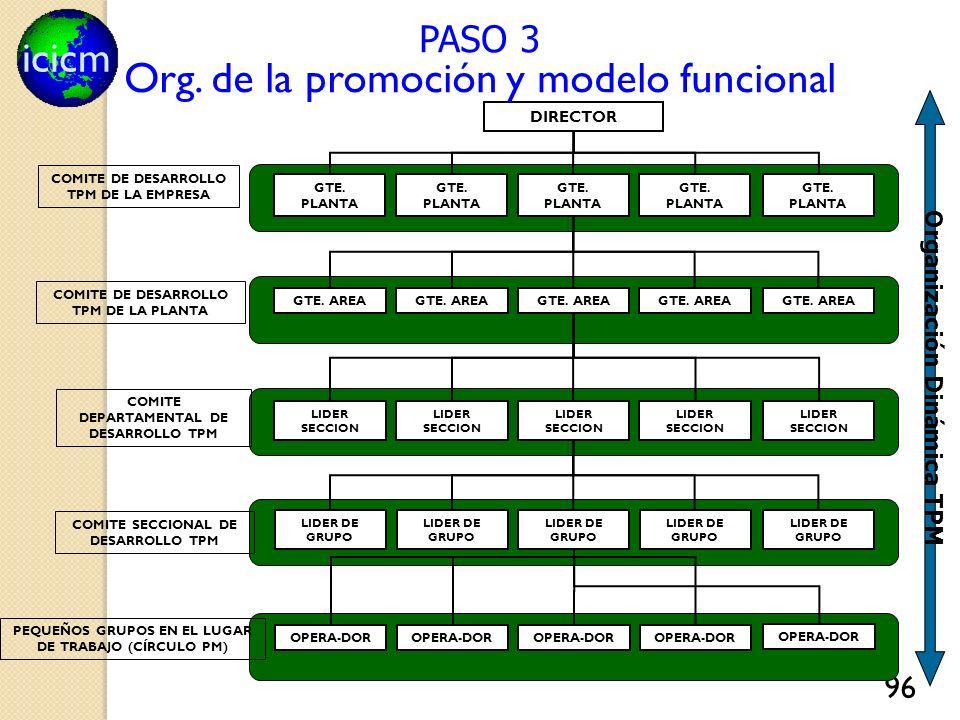Org. de la promoción y modelo funcional