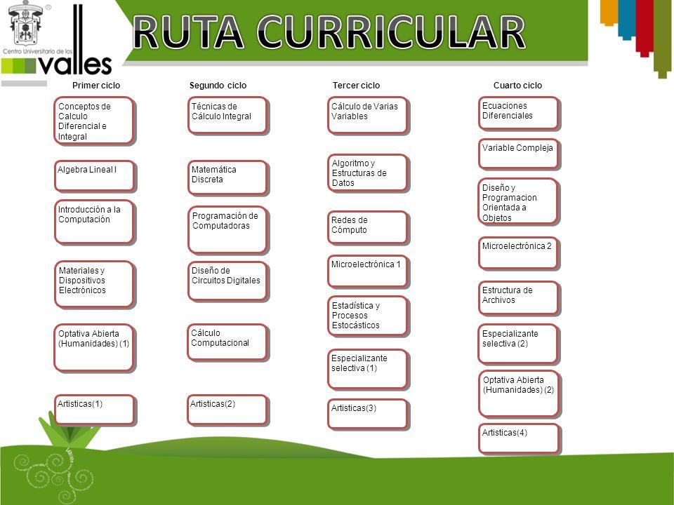 RUTA CURRICULAR Conceptos de Calculo Diferencial e Integral