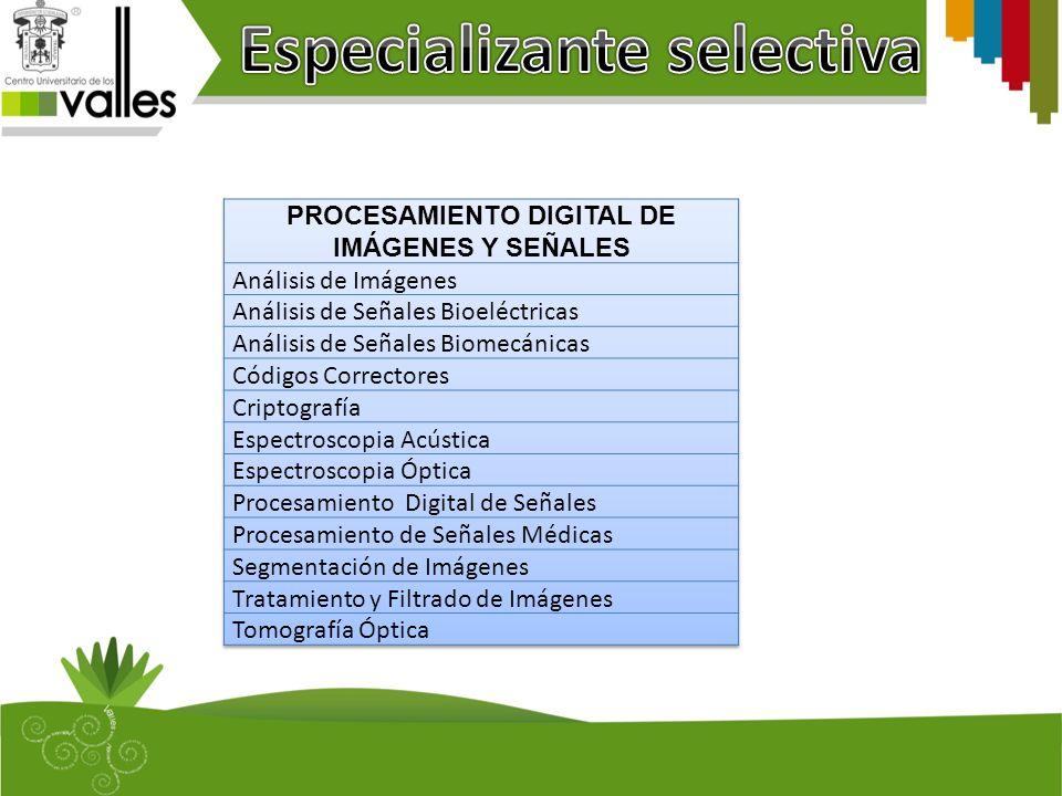 Especializante selectiva PROCESAMIENTO DIGITAL DE IMÁGENES Y SEÑALES