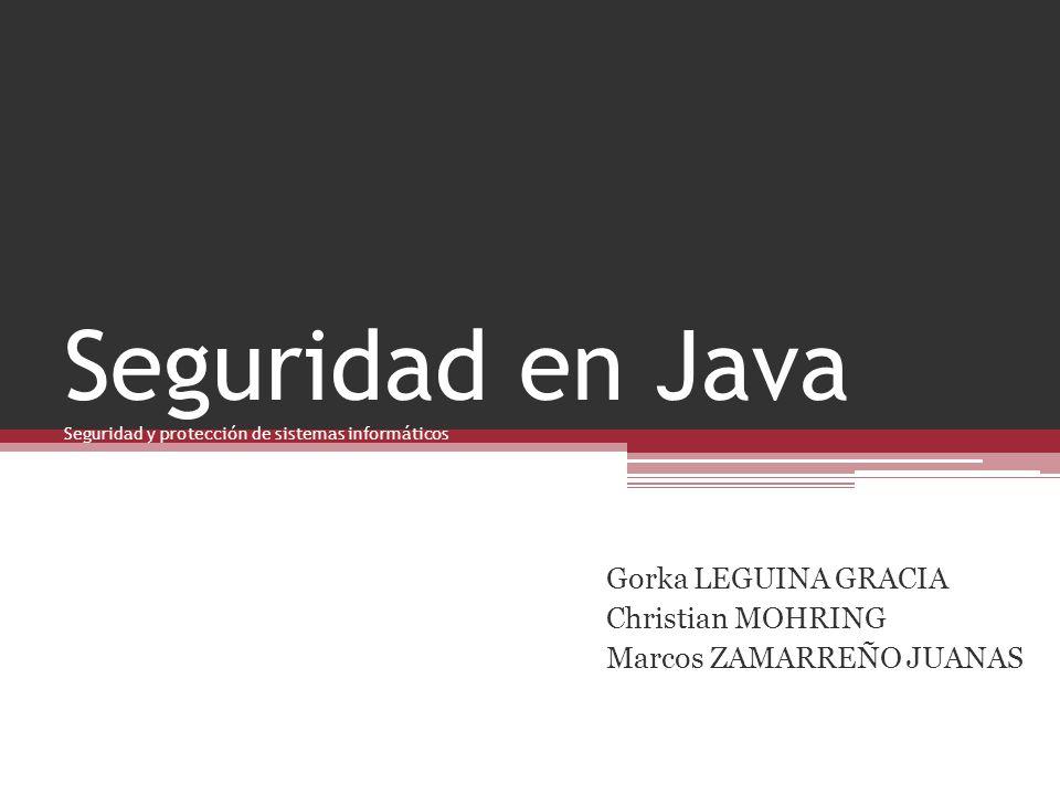 Seguridad en Java Seguridad y protección de sistemas informáticos