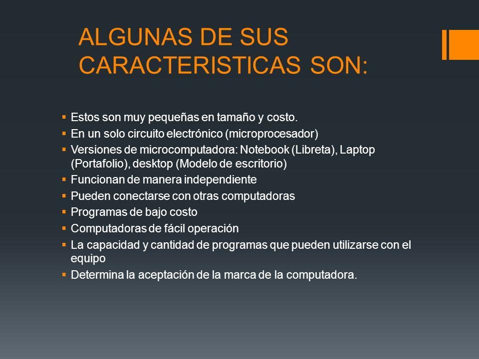 ALGUNAS DE SUS CARACTERISTICAS SON: