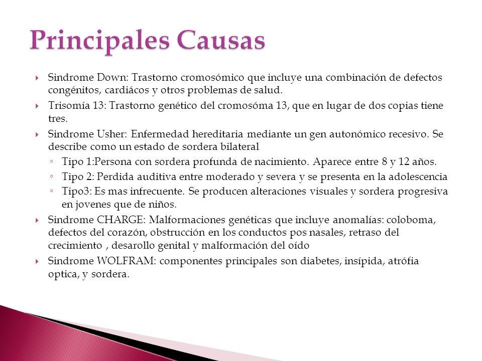 Principales Causas Sindrome Down: Trastorno cromosómico que incluye una combinación de defectos congénitos, cardiácos y otros problemas de salud.