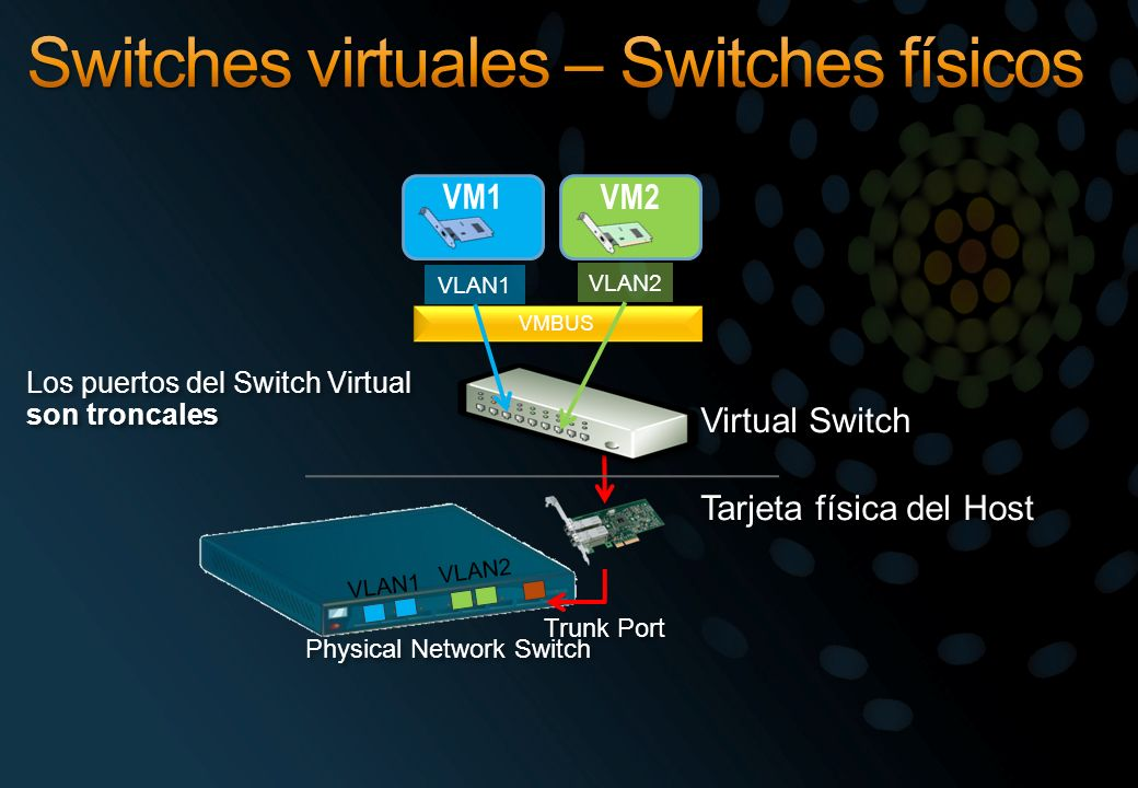 Switches virtuales – Switches físicos