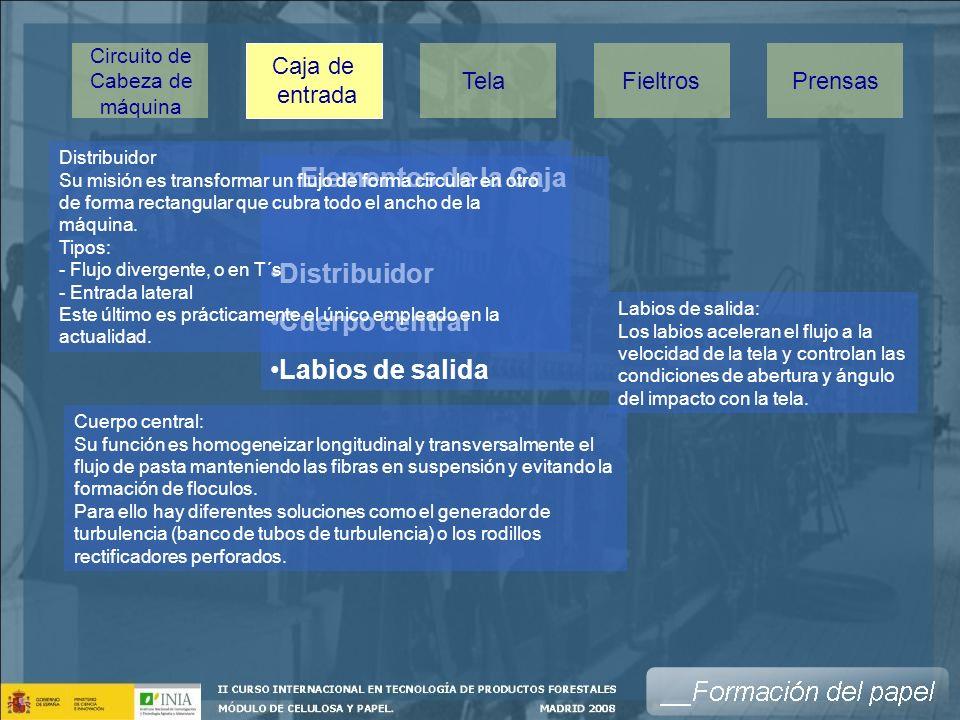 Elementos de la Caja Distribuidor Cuerpo central Labios de salida