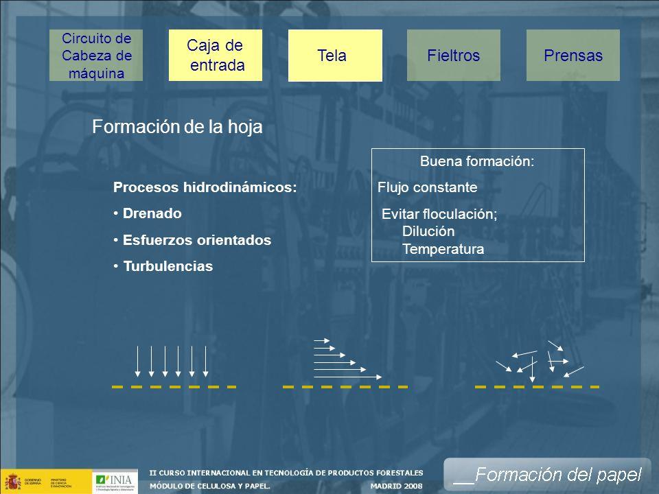 Formación de la hoja Caja de entrada Tela Fieltros Prensas Circuito de