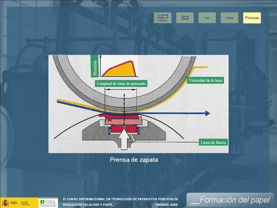 Prensa de zapata Prensas Caja de entrada Tela Fieltros Circuito de