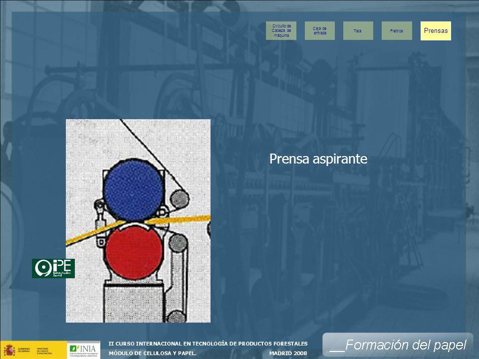 Prensa aspirante Prensas Caja de entrada Tela Fieltros Circuito de