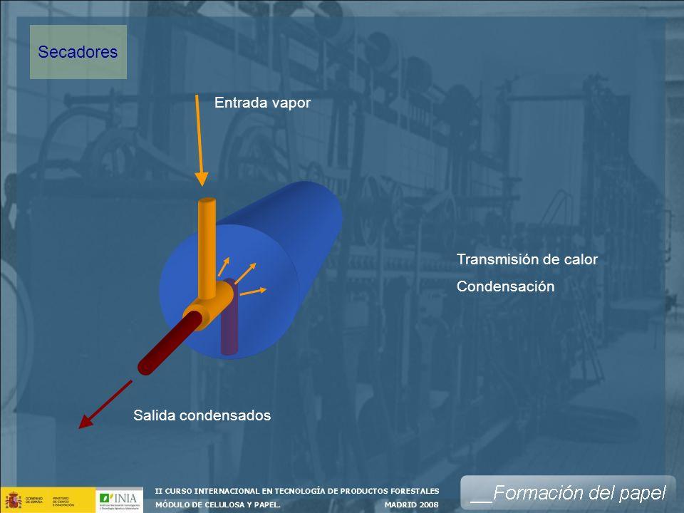 Secadores Entrada vapor Transmisión de calor Condensación