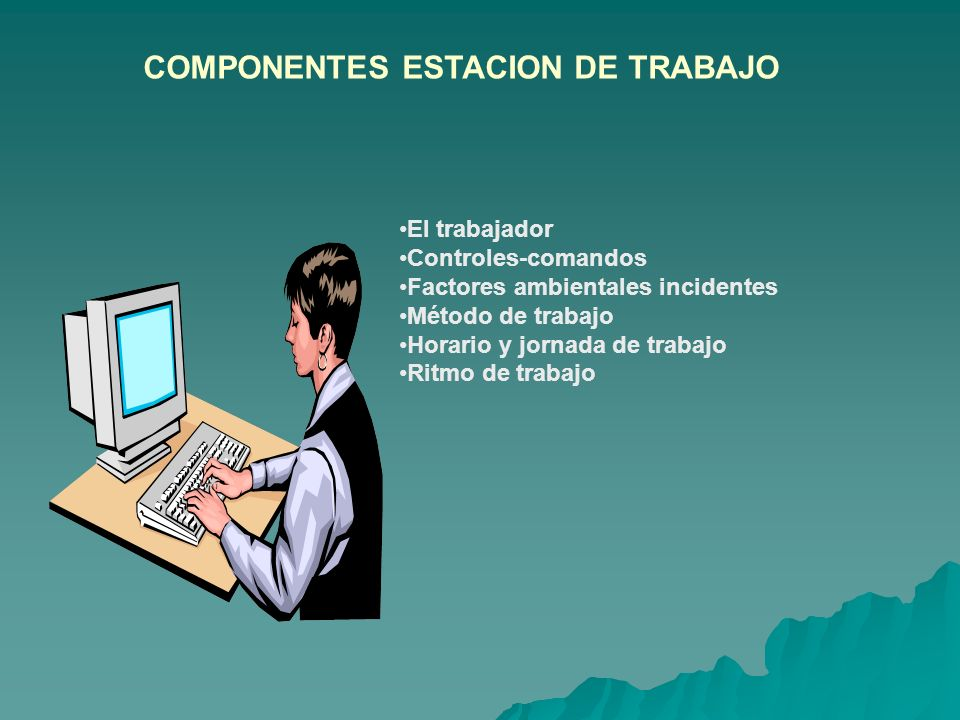 COMPONENTES ESTACION DE TRABAJO