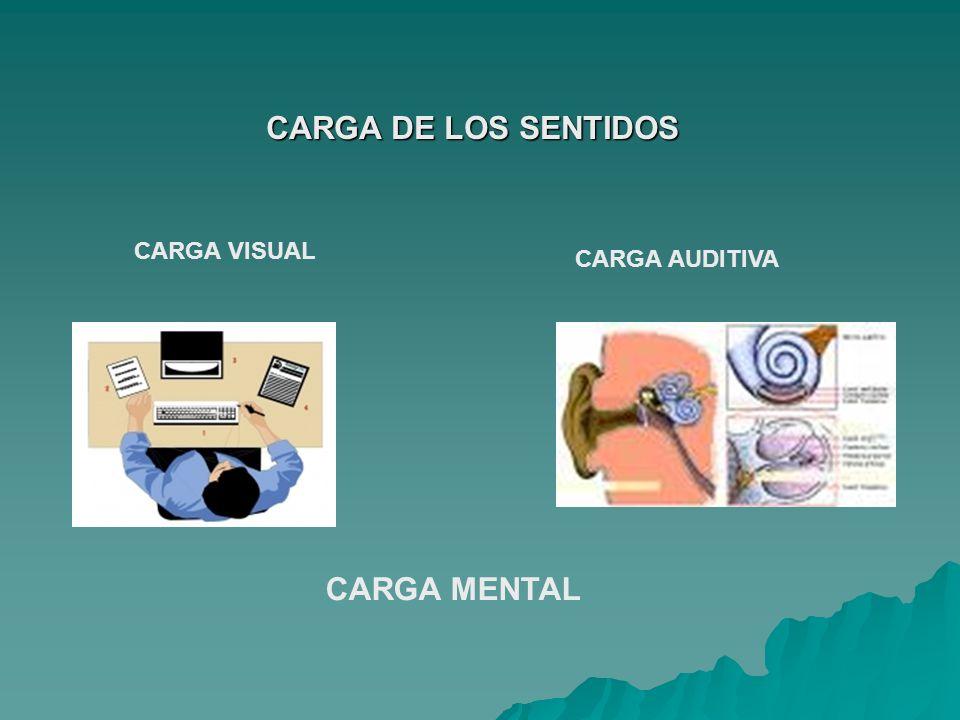 CARGA DE LOS SENTIDOS CARGA MENTAL