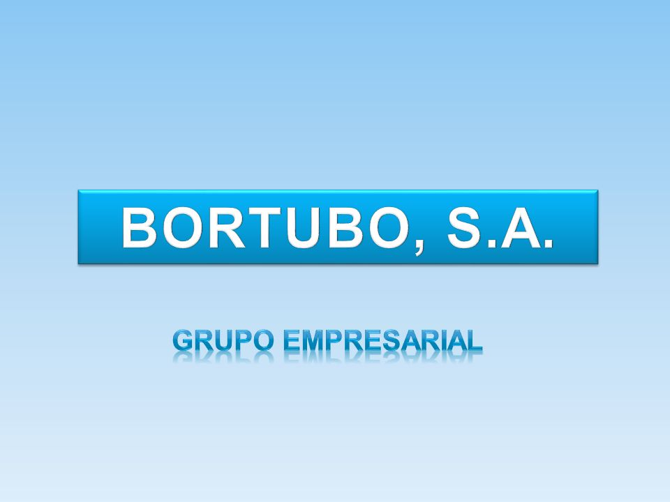 BORTUBO, S.A. Grupo empresarial