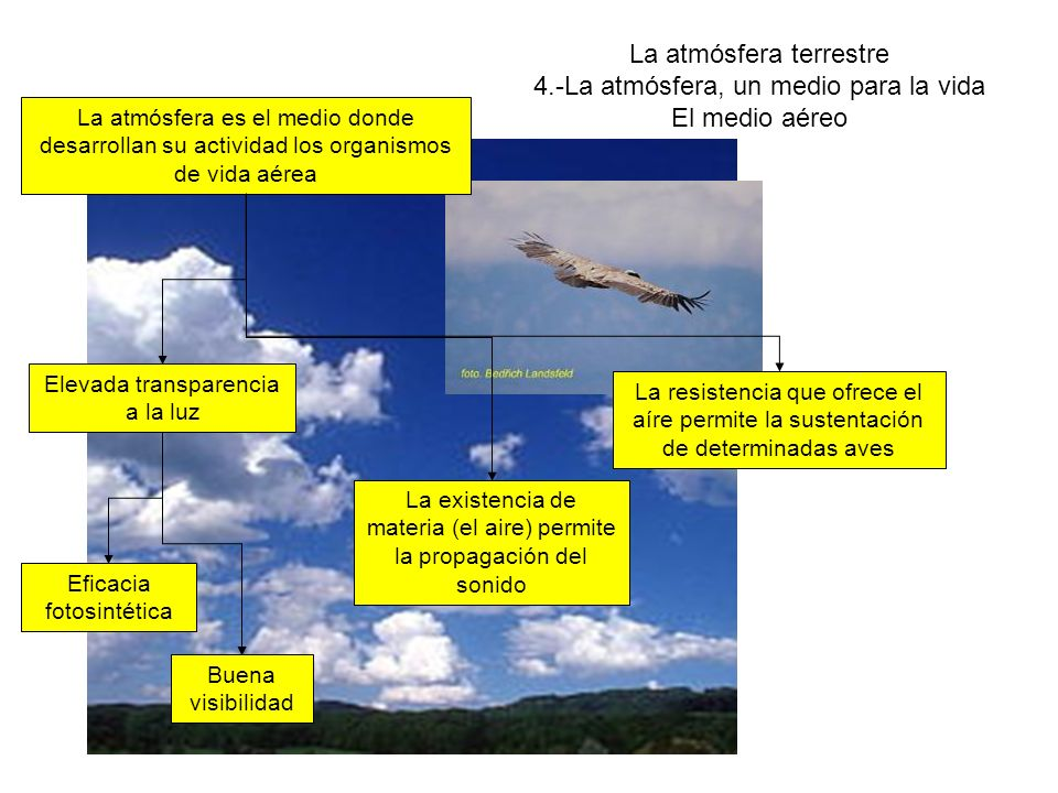 La atmósfera terrestre 4