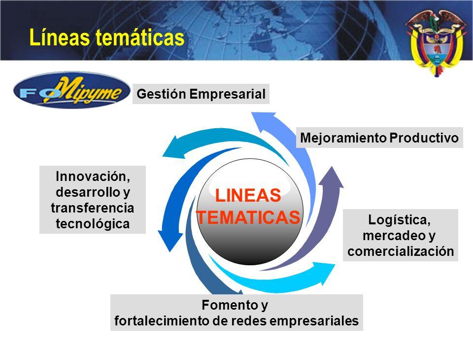 Líneas temáticas ¿Qué hemos hecho LINEAS TEMATICAS