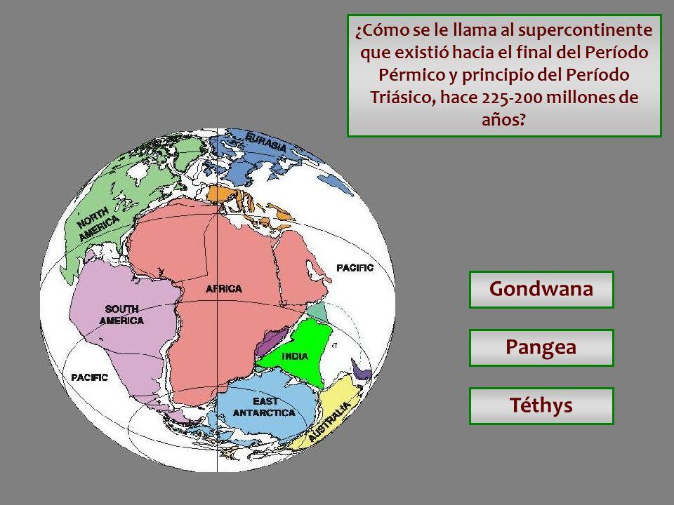 Gondwana Pangea Téthys
