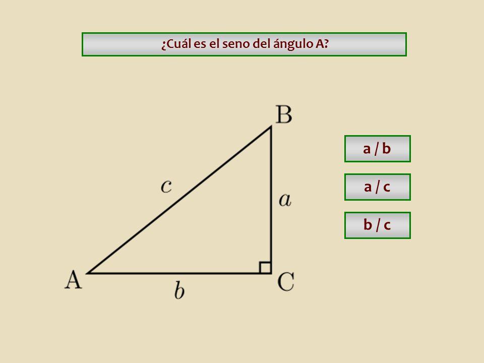 ¿Cuál es el seno del ángulo A