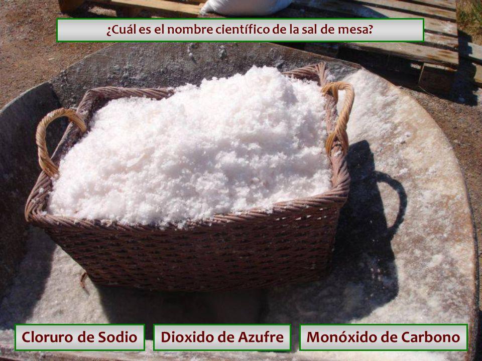 ¿Cuál es el nombre científico de la sal de mesa
