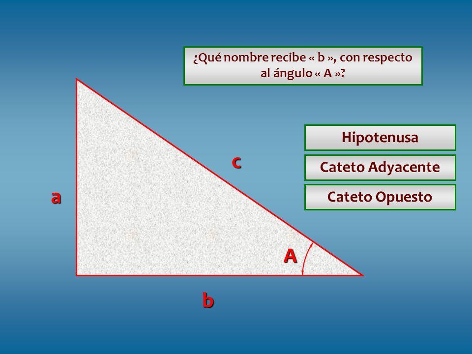 ¿Qué nombre recibe « b », con respecto al ángulo « A »