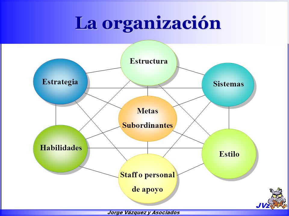 Las Seis Partes Básicas de la Organización