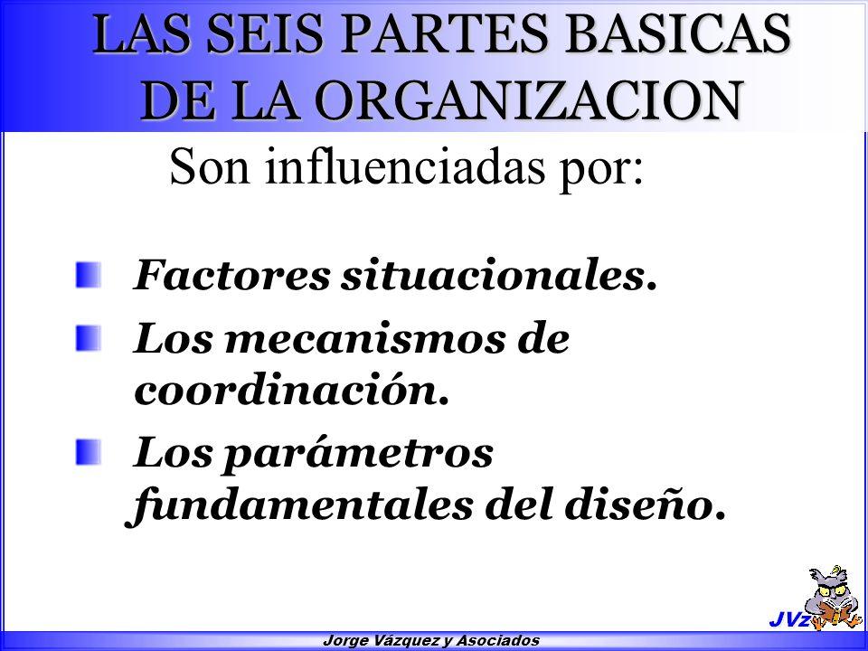 LAS SEIS PARTES BASICAS DE LA ORGANIZACION