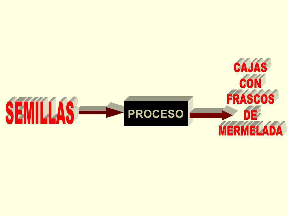 CAJAS CON FRASCOS DE MERMELADA SEMILLAS PROCESO