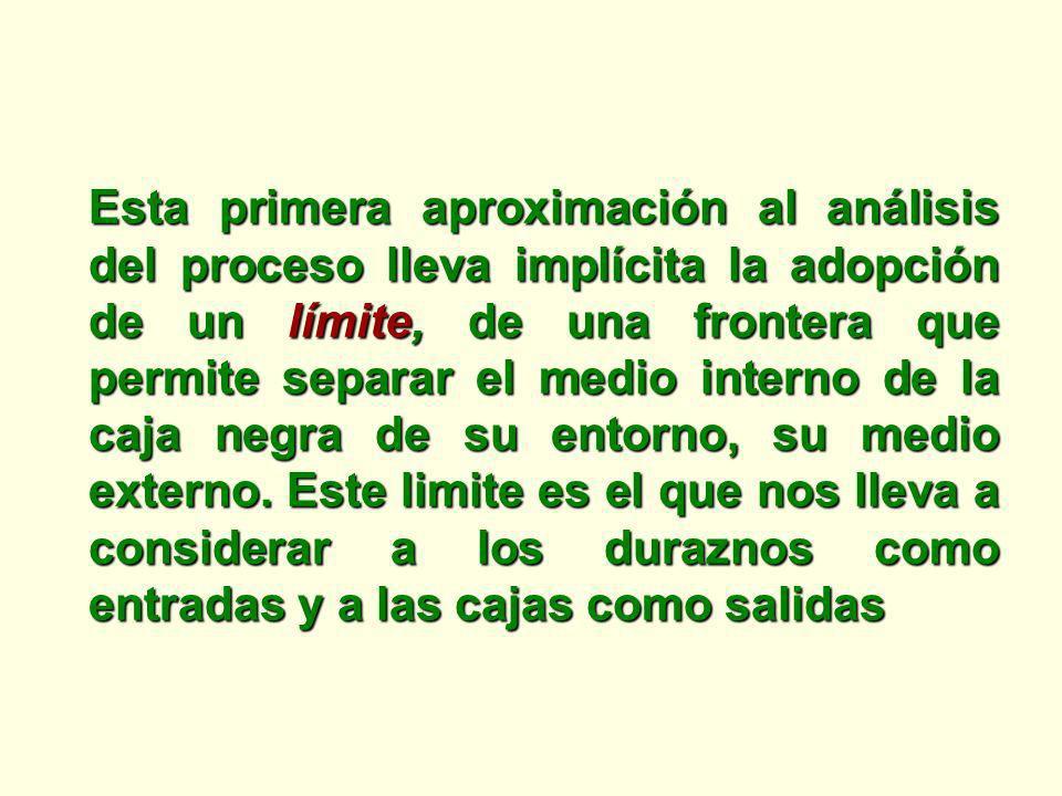 Esta primera aproximación al análisis del proceso lleva implícita la adopción de un límite, de una frontera que permite separar el medio interno de la caja negra de su entorno, su medio externo.