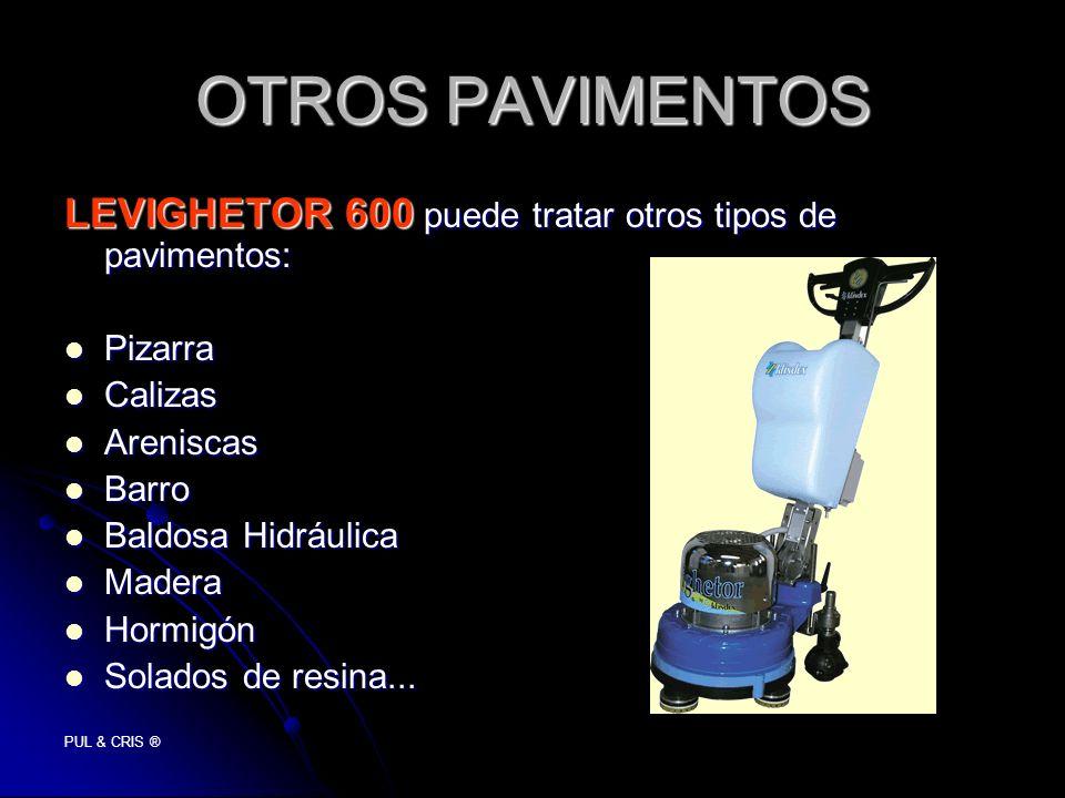 OTROS PAVIMENTOS LEVIGHETOR 600 puede tratar otros tipos de pavimentos: Pizarra. Calizas. Areniscas.