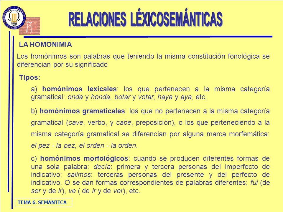 RELACIONES LÉXICOSEMÁNTICAS
