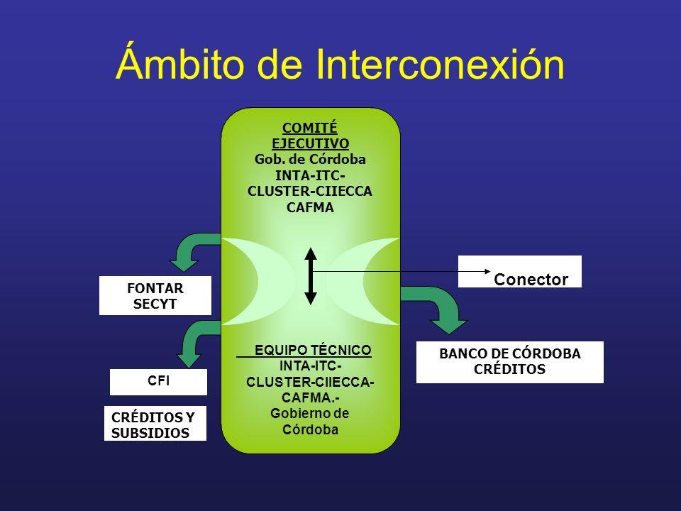 Ámbito de Interconexión