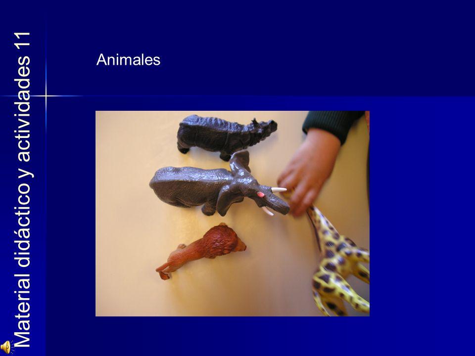 Material didáctico y actividades 11
