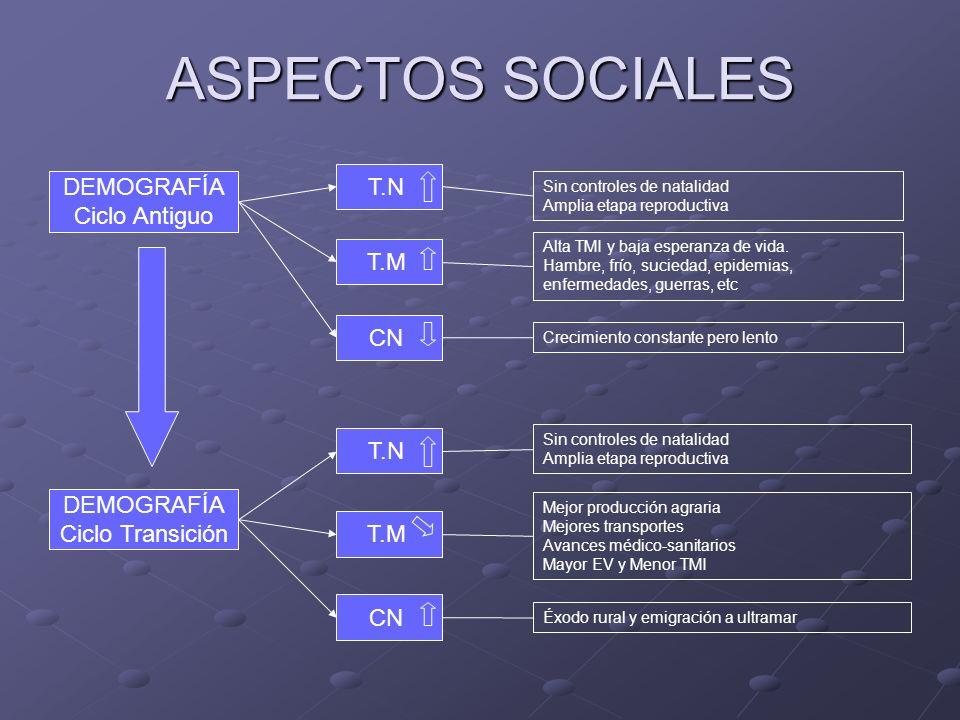 ASPECTOS SOCIALES T.N DEMOGRAFÍA Ciclo Antiguo T.M CN T.N DEMOGRAFÍA