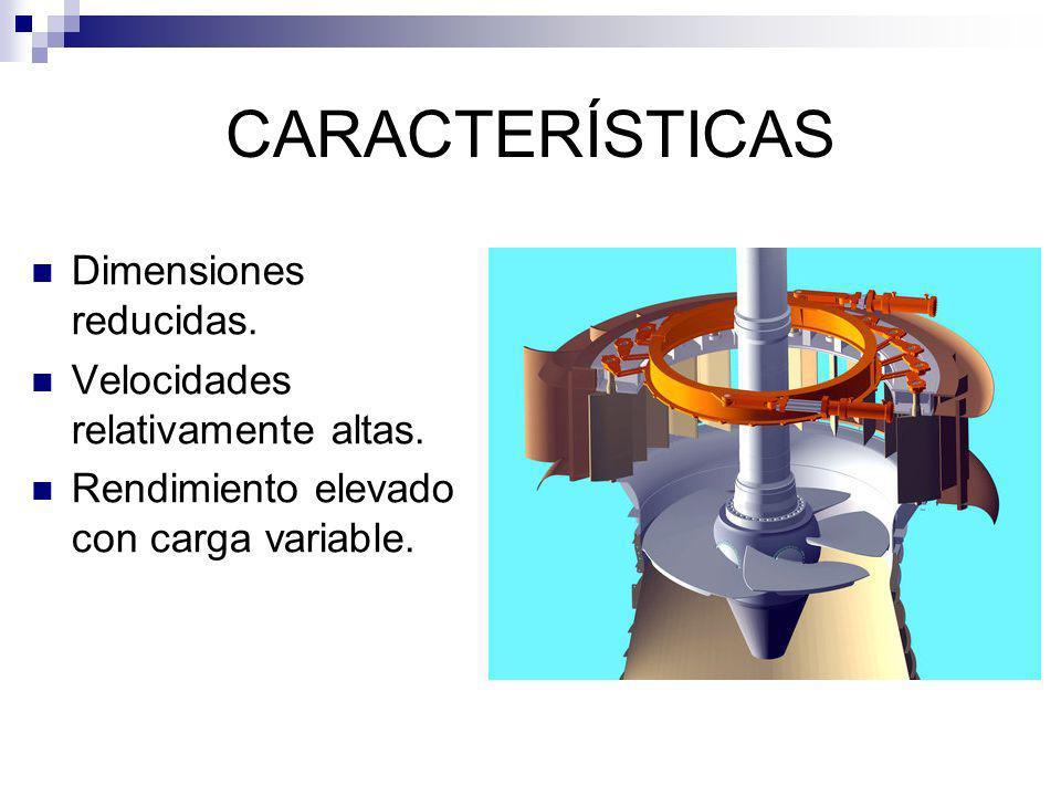 CARACTERÍSTICAS Dimensiones reducidas.