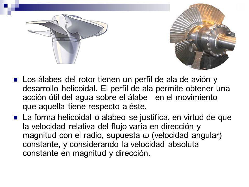 Los álabes del rotor tienen un perfil de ala de avión y desarrollo helicoidal. El perfil de ala permite obtener una acción útil del agua sobre el álabe en el movimiento que aquella tiene respecto a éste.