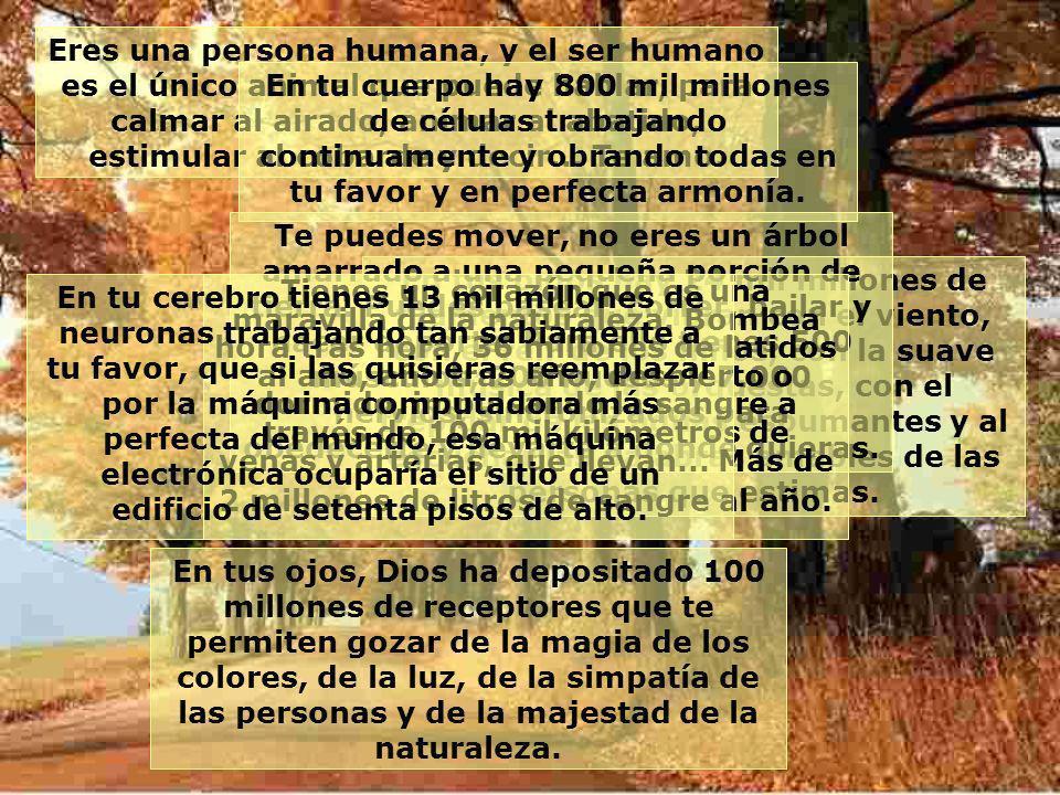 Eres una persona humana, y el ser humano es el único animal que puede hablar, para calmar al airado, animar al abatido, estimular al cobarde y decir... Te amo.