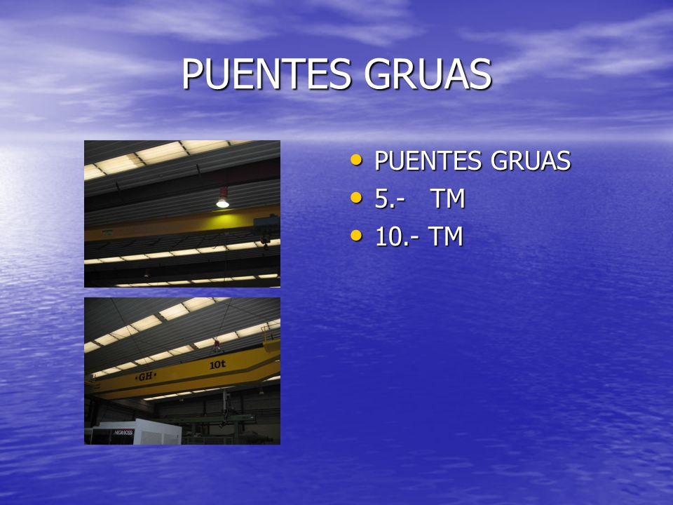 PUENTES GRUAS PUENTES GRUAS 5.- TM 10.- TM