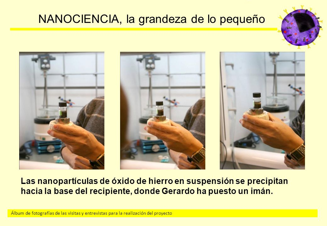 Las nanopartículas de óxido de hierro en suspensión se precipitan hacia la base del recipiente, donde Gerardo ha puesto un imán.