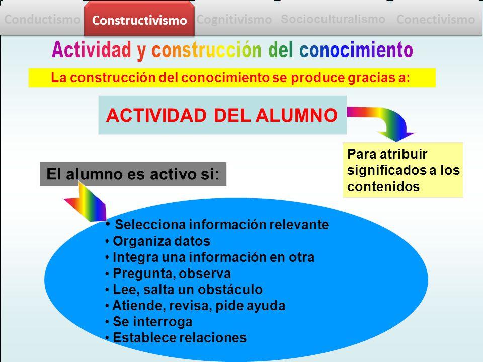 ACTIVIDAD DEL ALUMNO Actividad y construcción del conocimiento