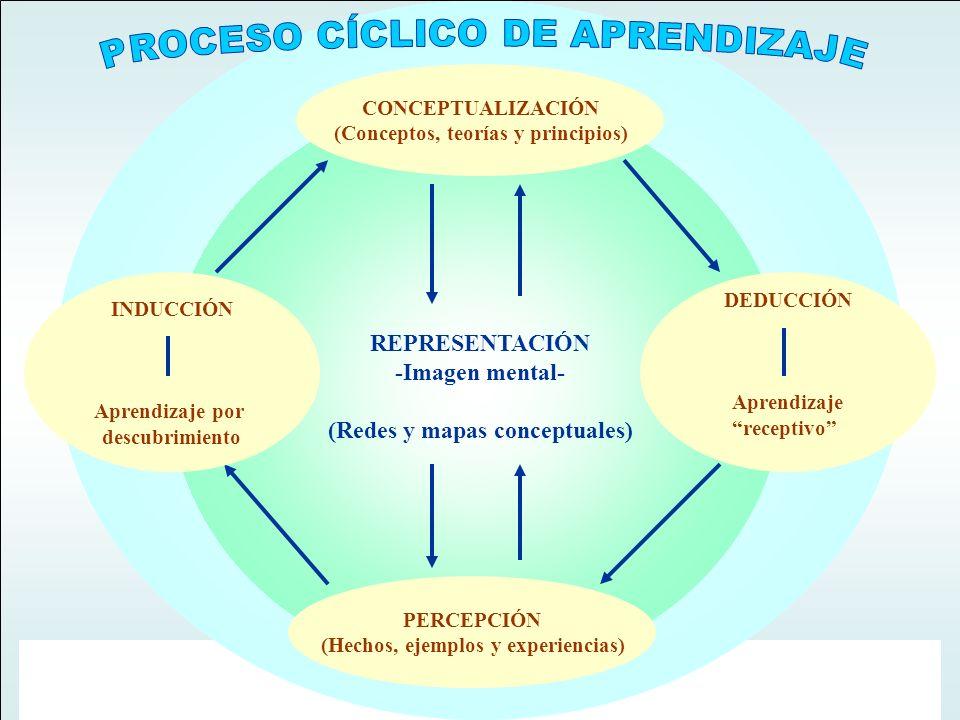 PROCESO CÍCLICO DE APRENDIZAJE
