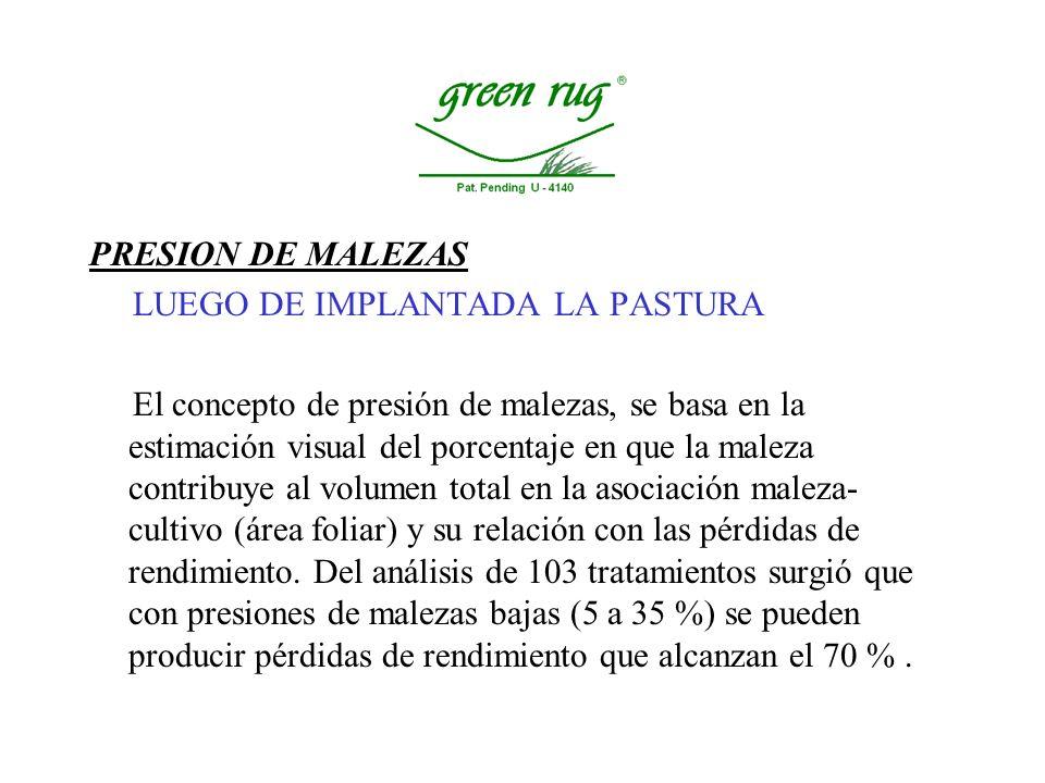 PRESION DE MALEZAS LUEGO DE IMPLANTADA LA PASTURA.