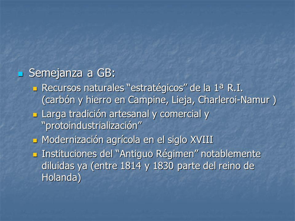 Semejanza a GB: Recursos naturales estratégicos de la 1ª R.I. (carbón y hierro en Campine, Lieja, Charleroi-Namur )