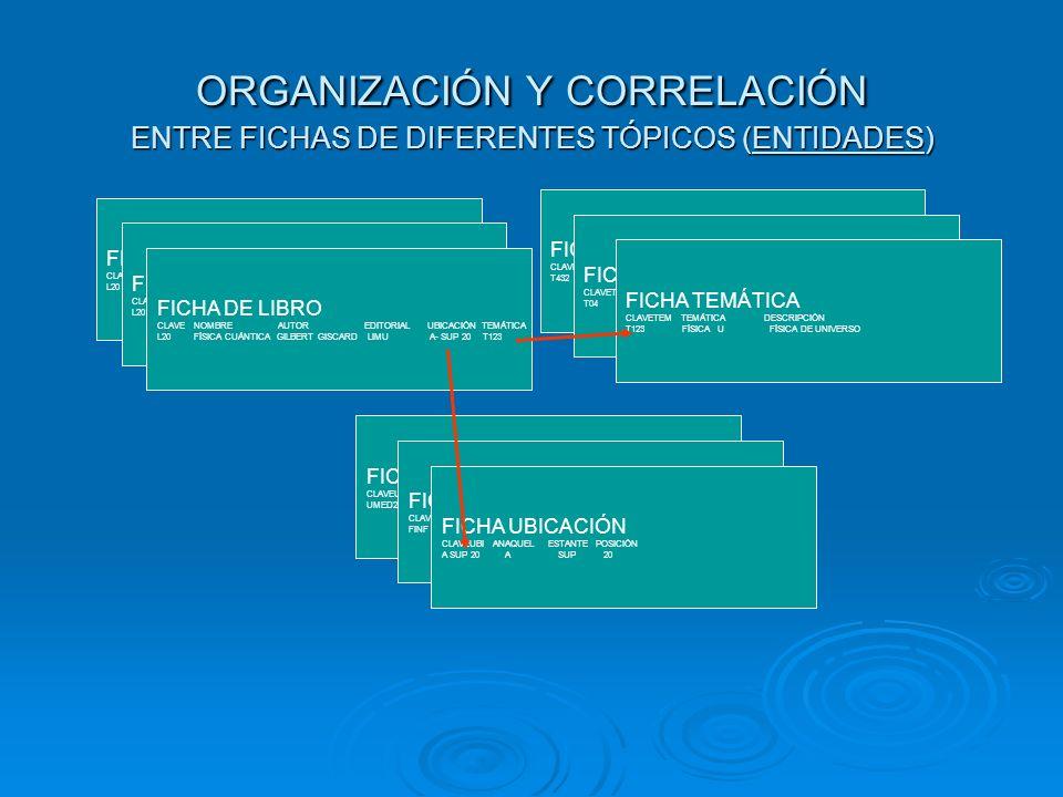 ORGANIZACIÓN Y CORRELACIÓN ENTRE FICHAS DE DIFERENTES TÓPICOS (ENTIDADES)