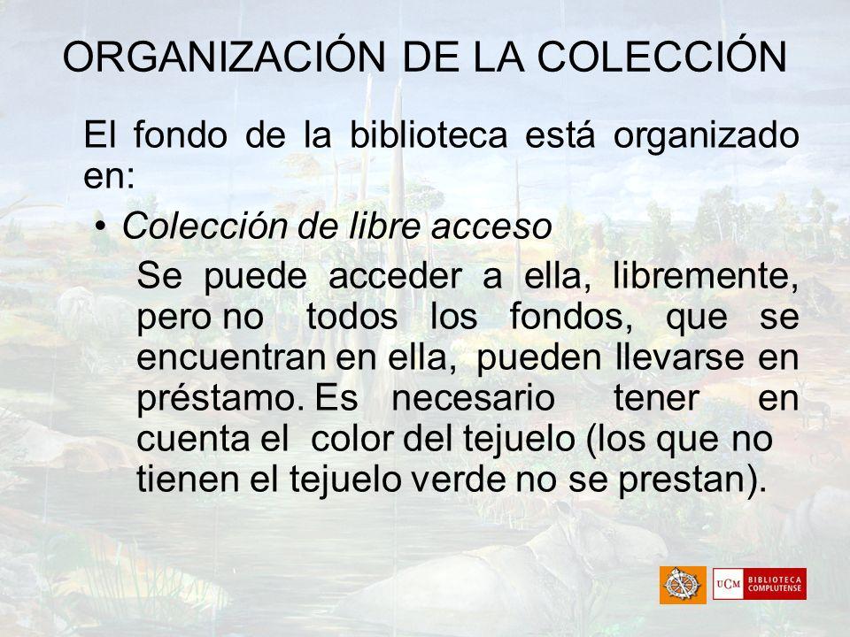 ORGANIZACIÓN DE LA COLECCIÓN