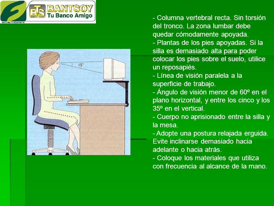 - Columna vertebral recta. Sin torsión del tronco